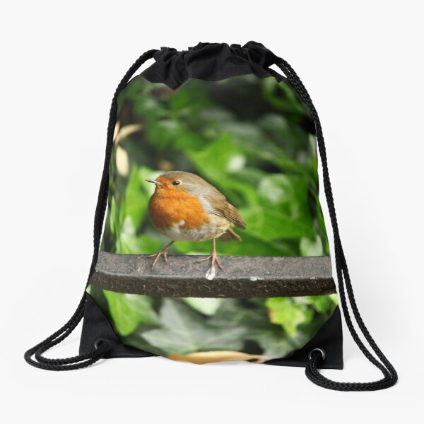 British Isles 12 Drawstring Bag