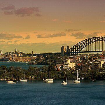 Sydney by stacky