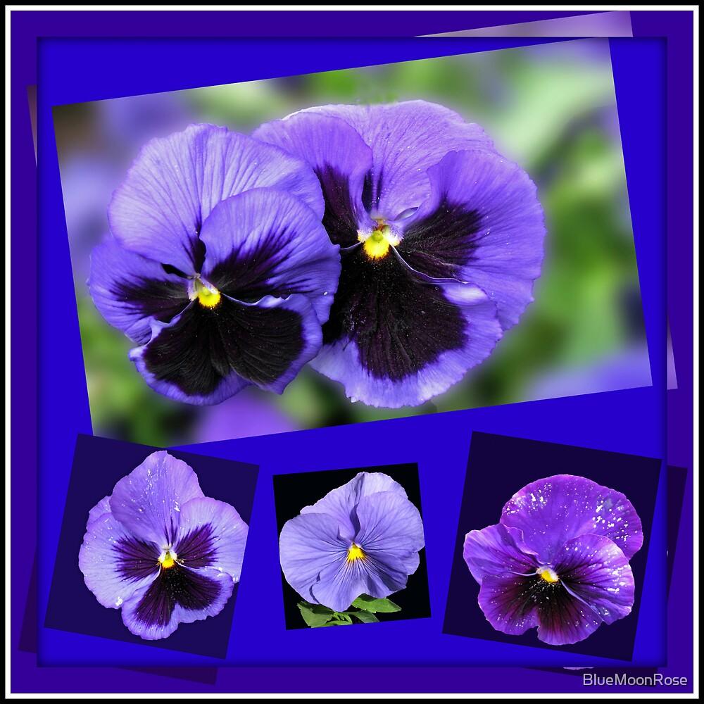 Got the Blues - Purple Pansies Collage von BlueMoonRose