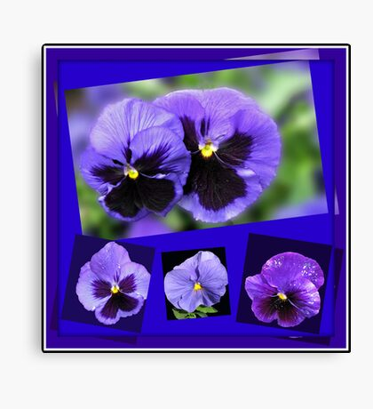 Got the Blues - Purple Pansies Collage Leinwanddruck