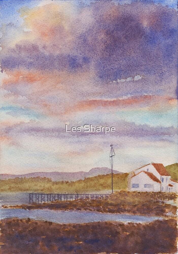 Evening Light, Strangford by Les Sharpe