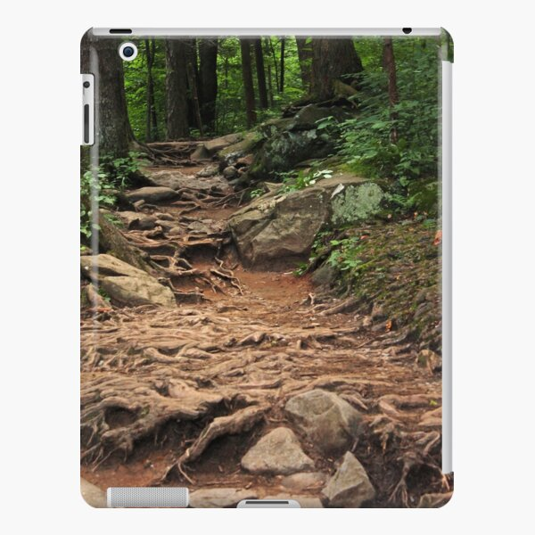 Landscape 16 iPad Snap Case