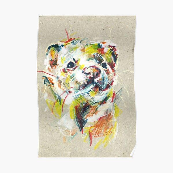 Ferret I Poster