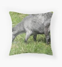 Hungry Little Goat Throw Pillow