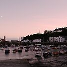 Porthleven Harbour. by AndyReeve