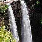 My Backyard adventures on Kauai by Mary Ellen Hurley
