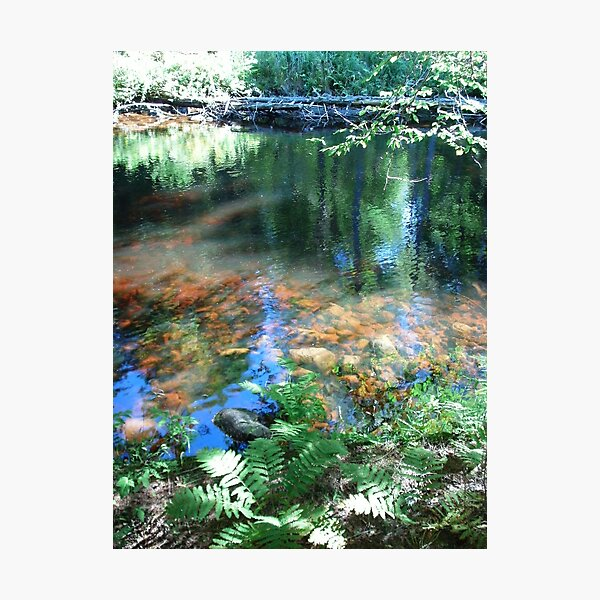 Watercolored Wind Photographic Print