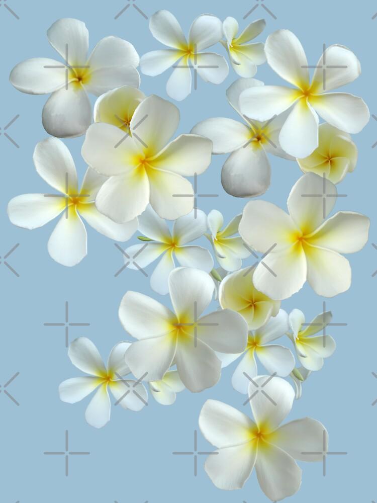Frangipani - Weiß und Gelb von STHogan