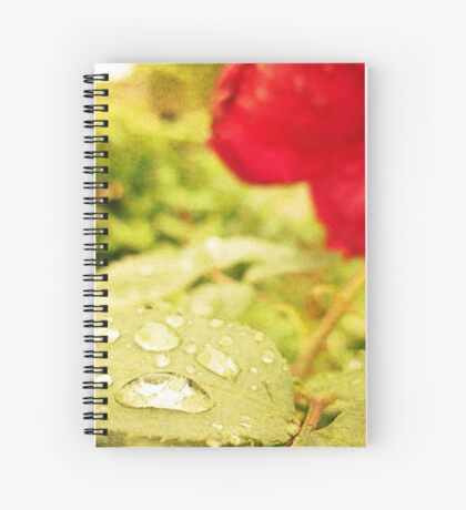 A string of pearls for a rose - Rain Drops Red Rose Spiral Notebook