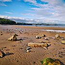 Evening Sunshine On Wet Beach - Coastal Scenery - Saundersfoot by Harmony-Mind