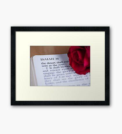 The Desert Shall Blossom As The Rose Framed Print