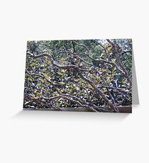 Exotic Branches Greeting Card