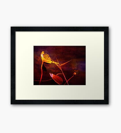 Red as Blood Framed Print