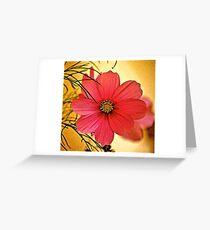 Cosmea Flower Greeting Card