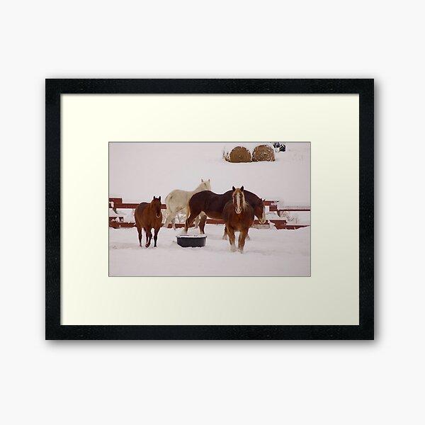 Winter Draft Framed Art Print