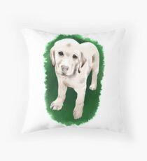 Labrador Retriever  Floor Pillow