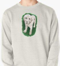 Labrador Retriever  Pullover Sweatshirt