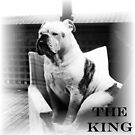 THE KING by pollyrose