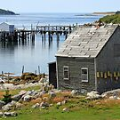 Deep Cove Island Shanty by Debbie  Roberts