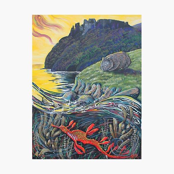 Maria Island 1 Photographic Print