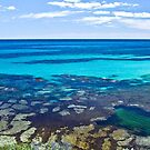 The water so blue - Rotnest Island, Perth, Western Australia by Karen Stackpole