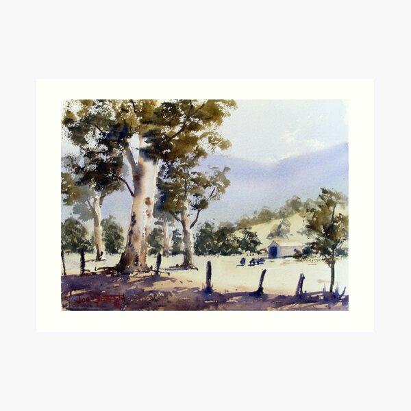 Road to Dunn's Swamp, NSW Art Print
