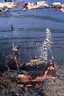 Mermaid by richman
