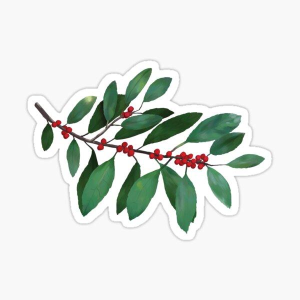 Winterberry | Ilex verticillata Sticker