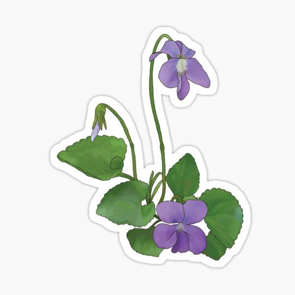 Wild Violet Sticker