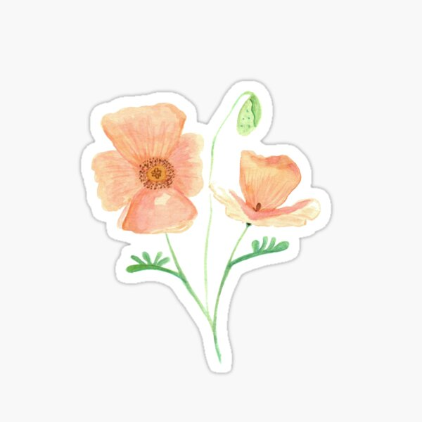 Blossoming Poppies Sticker