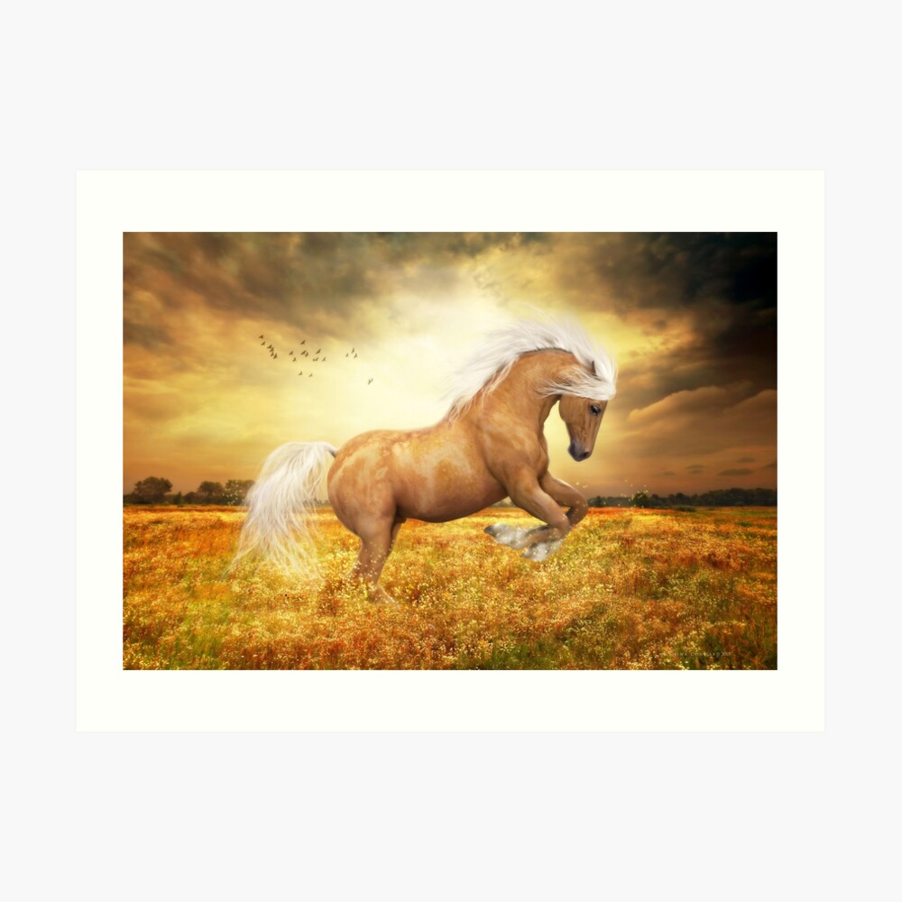 Palomino-Pferd Sundance Kunstdruck
