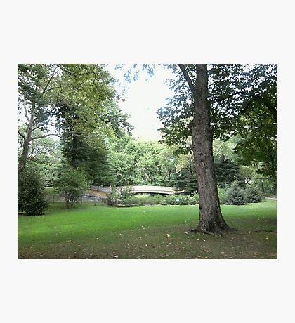 Central Park Footbridge Photographic Print