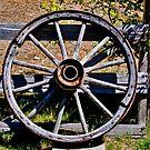 Wheel or Tiller? by Bryan D. Spellman