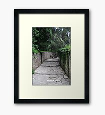 Pathway of the Summer Palace Framed Print