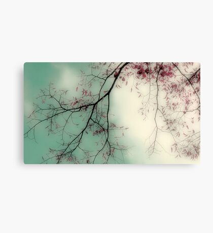 Half for me, half for you Canvas Print
