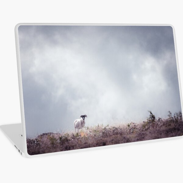 """The Lookout"" by Cat Burton Laptop Skin"
