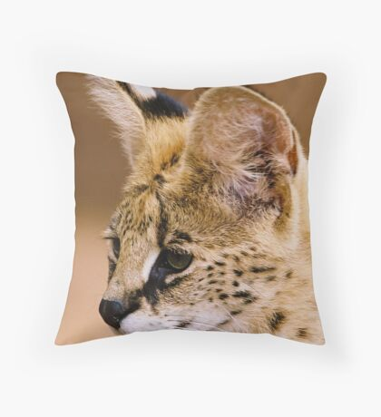 Young Servil Throw Pillow