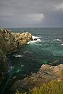 central coast point lobos by photosbyflood