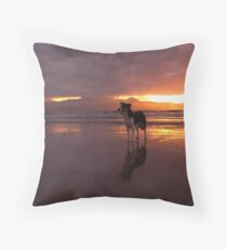 Dog on beach - The Maharees, County Kerry, Eire Throw Pillow
