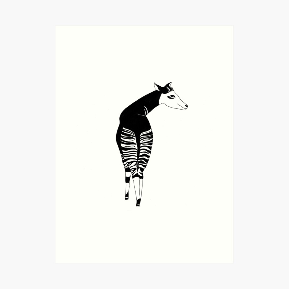 Okapi (ink illustrations of weird animals that are real) Art Print