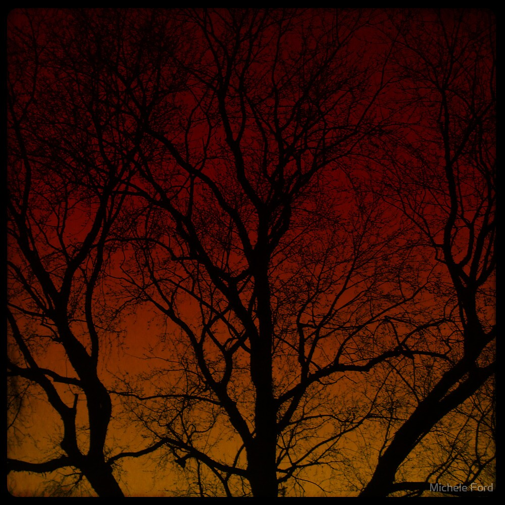 The Haunted Old Tree by Michele Ford