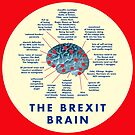 THE BREXIT BRAIN - A GUIDE by Clifford Hayes
