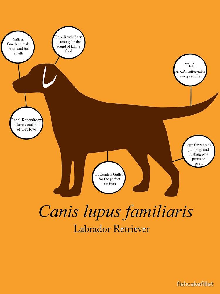 Anatomy Of A Labrador Retriever Unisex T Shirt By Fishcakefillet