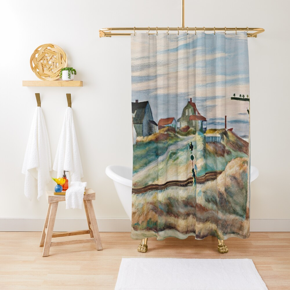 cottages at north truro - Edward Hopper Shower Curtain