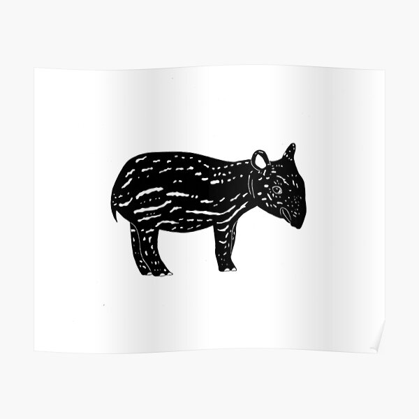 Tapir (ink illustrations of weird animals that are real) Poster