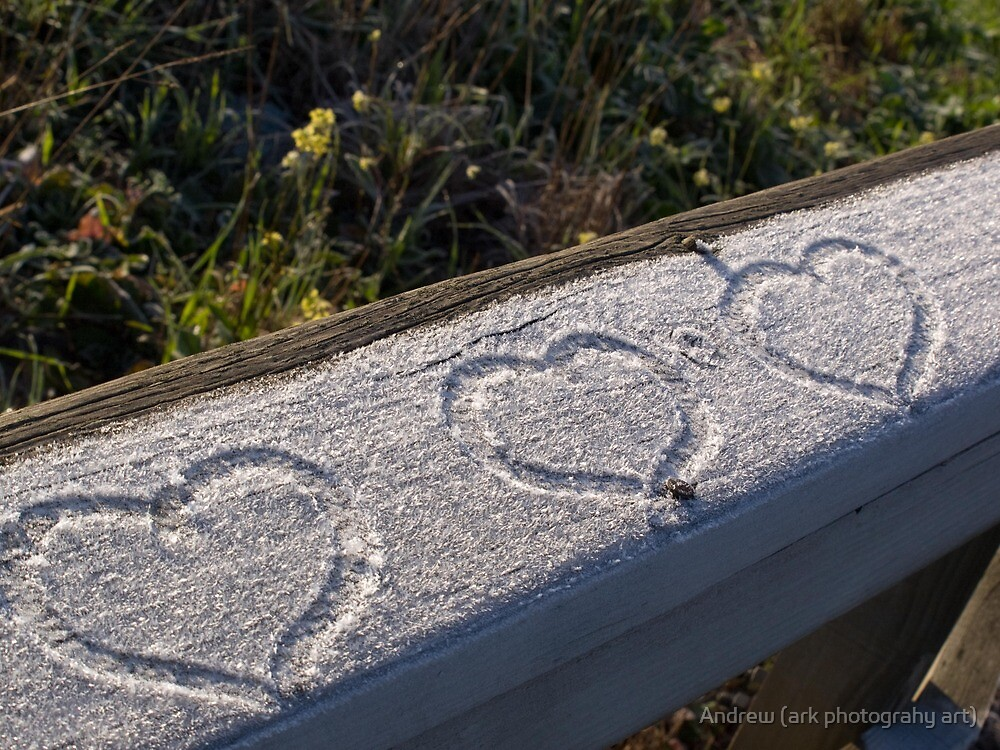 Three Hearts by Andrew (ark photograhy art)