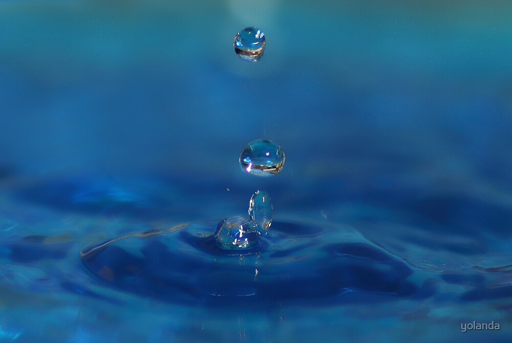 Drops in Blue by yolanda