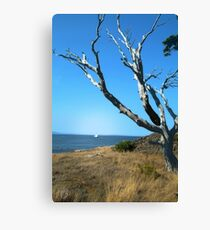 Desolate Tree Canvas Print
