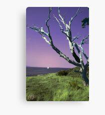 Desolate Tree (colorized) Canvas Print