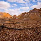 Painted Desert  by bettyb